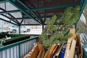 Новогоднюю елку можно будет сдать в переработку