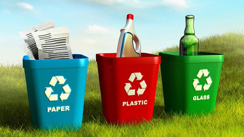 Раздельный сбор мусора в Сосновом Бору
