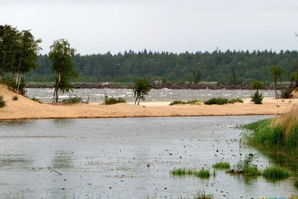 Купание в устье реки Коваш запрещено